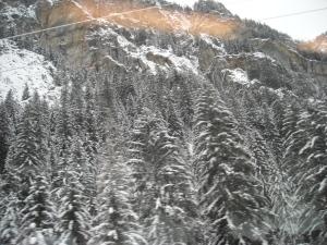 Zermatt 019