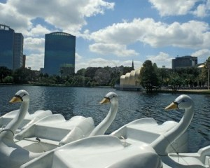 11593514-swan-boats-wait-at-dock-on-lake-eola-orlando-florida-band-shell-and-skyline-in-background
